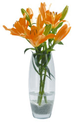 Hajlított váza
